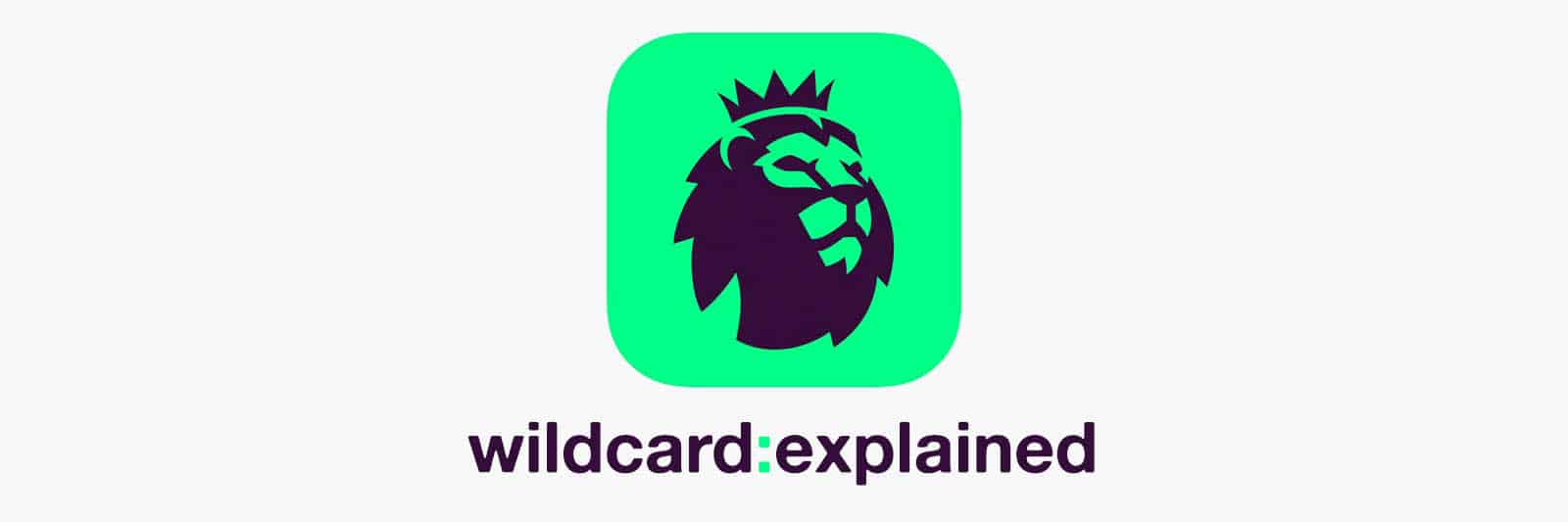 fpl-wildcard-explained